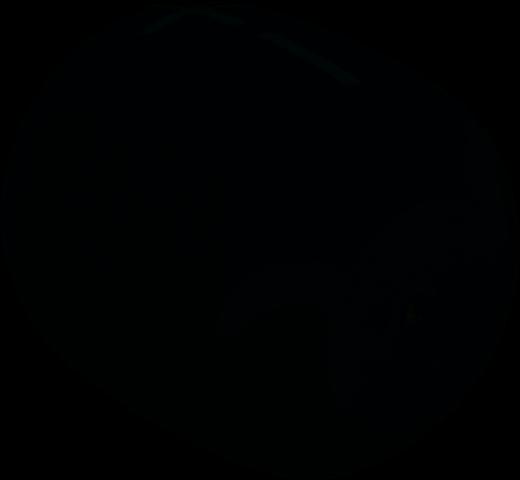 Wonderboom 2 Noire Bas
